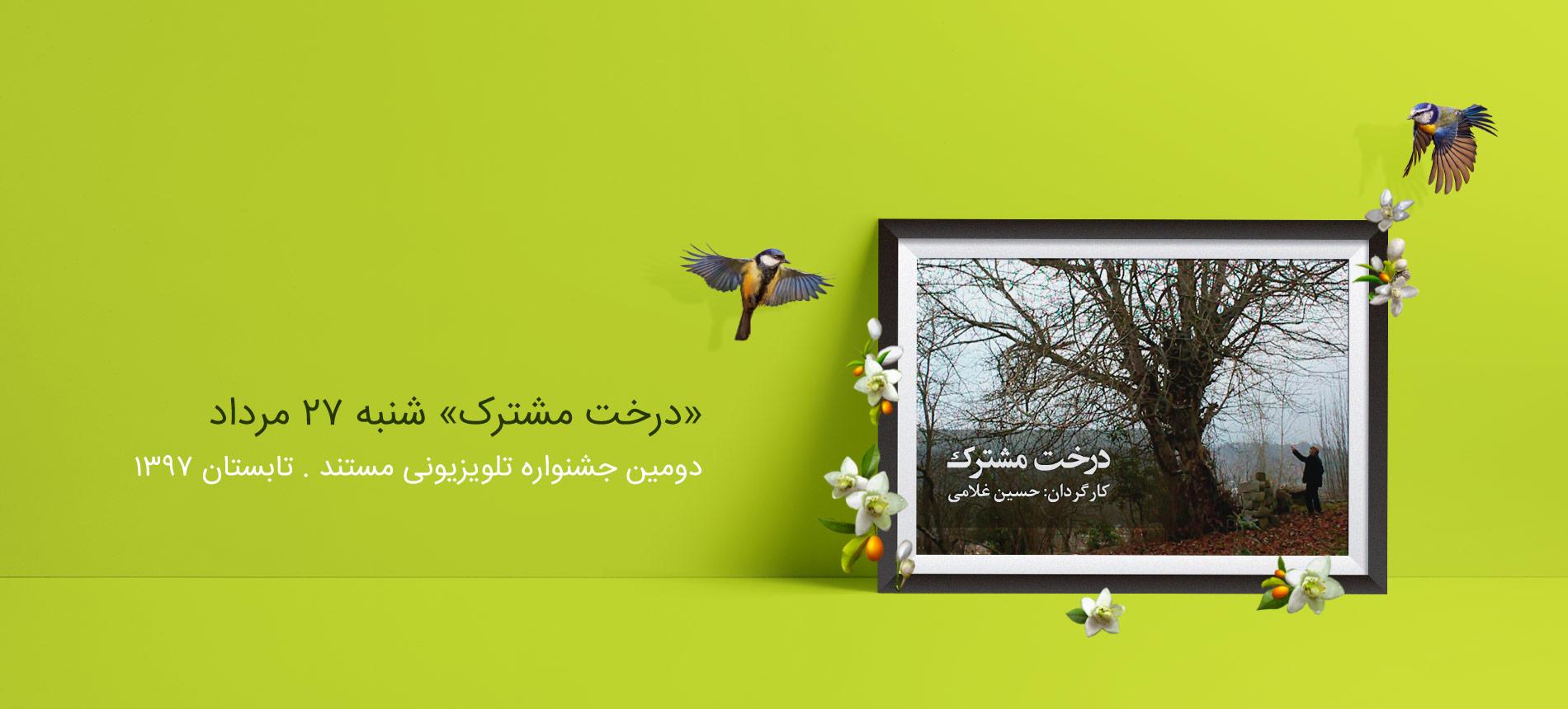 داستان جنجال بر سر «درخت مشترک» به روایت «حسین غلامی»