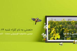 داستان کاشت، داشت و برداشت در «نعمتی به نام کلزا» به روایت «زهرا ایران نژاد»